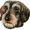 dachshund-jagthund-jagtverein-stickerei-dm536
